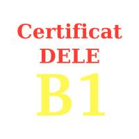 Examen d'espagnol DELE B1